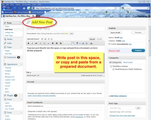 Screenshot of Wordpress content management system in use to add a new post.